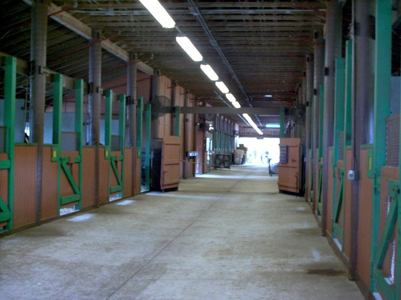 Stables   interior
