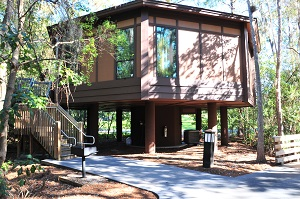 Treehouse Villas At Disney S Saratoga Springs Resort